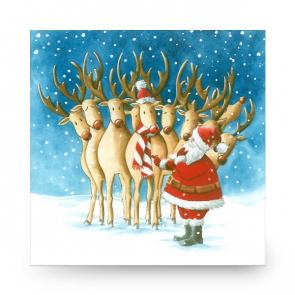 Mini Christmas Card Santas Reindeer